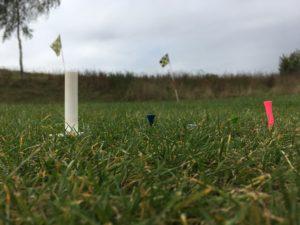 fandegolf.fr - fan de golf - tees de golf collection