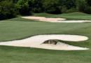bunker golf - fandegolf.fr